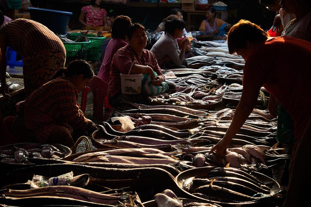Dawei morning market