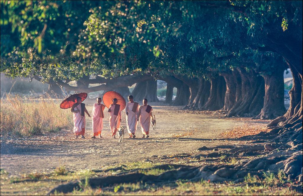 Vanishing Myanmar21