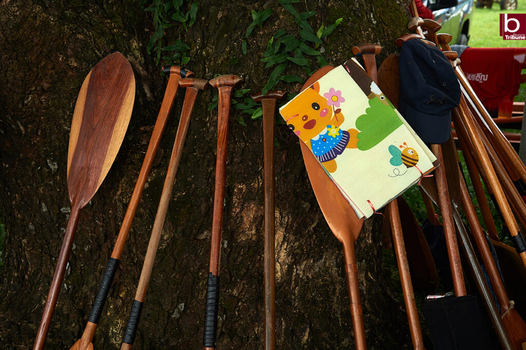 Mekong Boat Racing - paddle