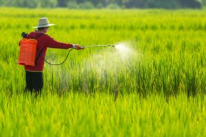 A Ban on Toxic Farm Chemicals: Thailand's long road to food and farm safety