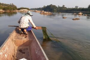 Mekong's fine sediments are no longer present: MRC